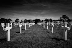 Shadows Of The Fallen