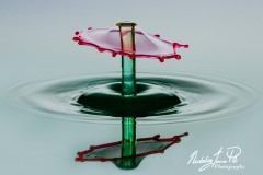 Parasol Water Drop_Nick Pitt