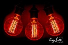Trio Of Lamps