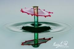 Parasol Water Drop_Nick Pitt
