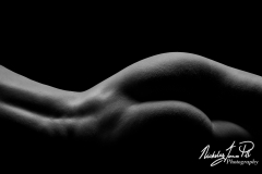 Sensual Curves